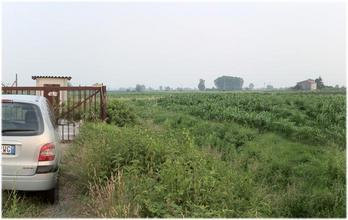 #1: Confluence behind the gate in the corn field