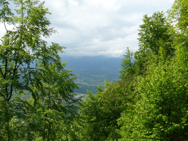 View north: Piave valley