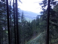 #10: View into the Valley at 20 m Distance