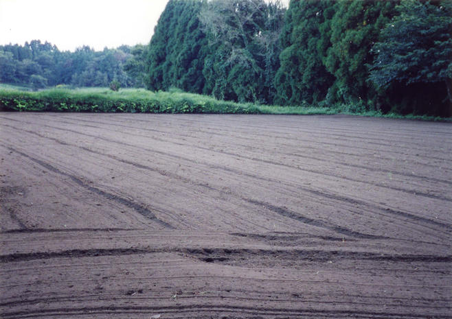 A newly-plowed field