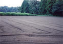 #6: A newly-plowed field