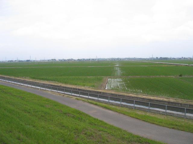 View of canal and fields from the west