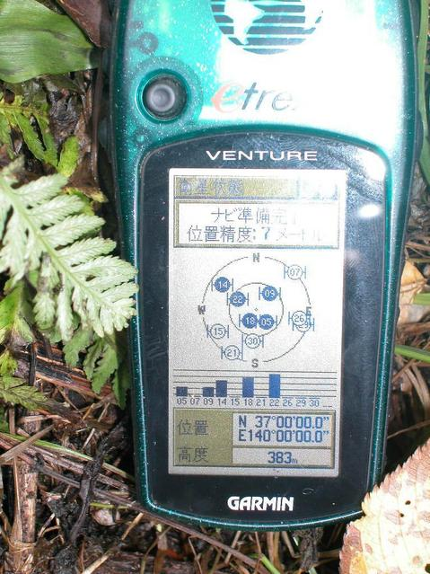 GPS screen 20 meters west from the pole..