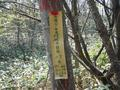 #4: Some kind of forest marker at the confluence.