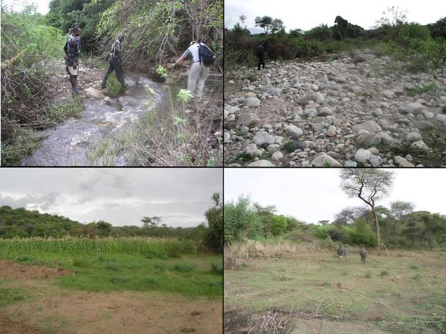 The final kilometer hike to the Confluence crossed streams, a dry riverbed, ripe corn (maize) fields, and cleared land
