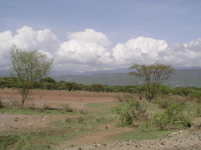 Looking toward the Nguruman Escarpment to the southwest from the Ewaso Plain
