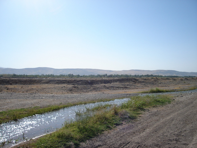 200m west of the confluence looking towards the riverbed