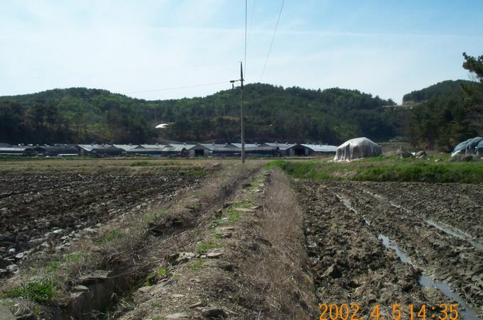 Looking west; you can see several barns at the end of the rice field.