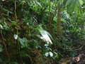 #2: View to the East