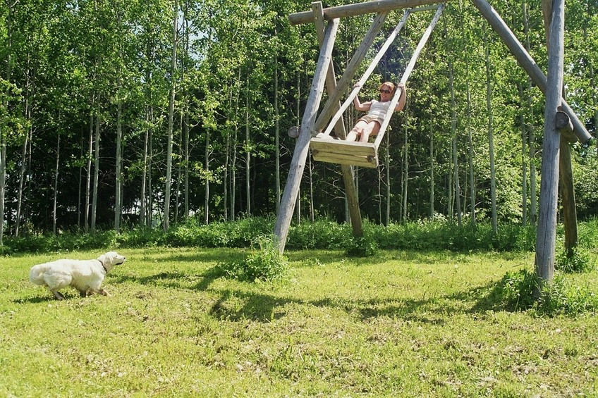 wooden swing on the meadow near the lake