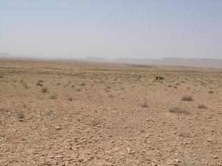 #1: General view of the area