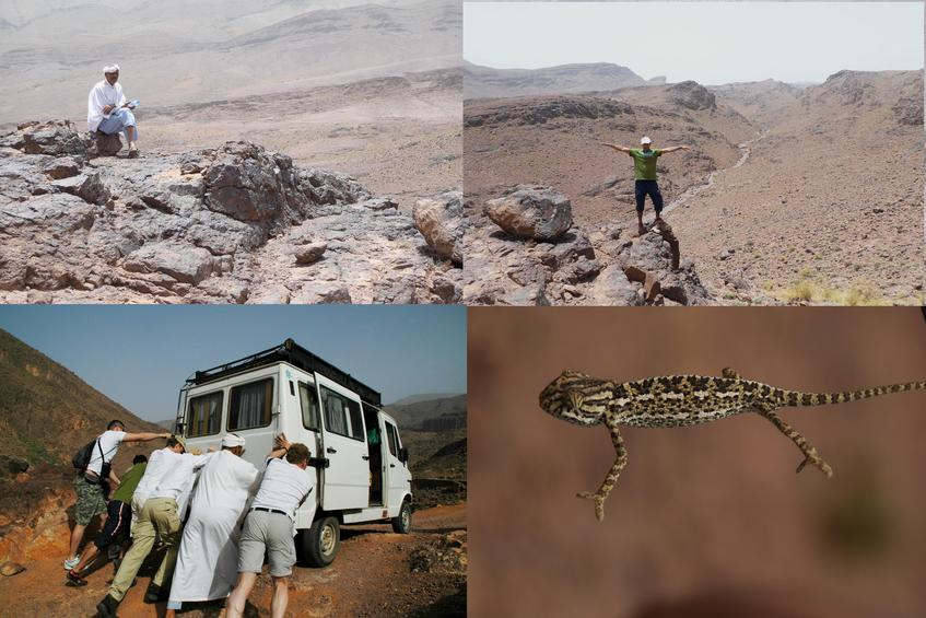 Our guide, Moustafa, our truck, and a gecko
