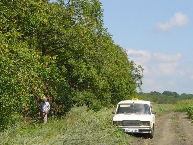 our driver and car (250m from the confluence)