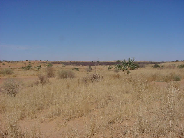 What the desert looks like to the south of the Confluence