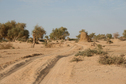 #7: Track along the Niger River