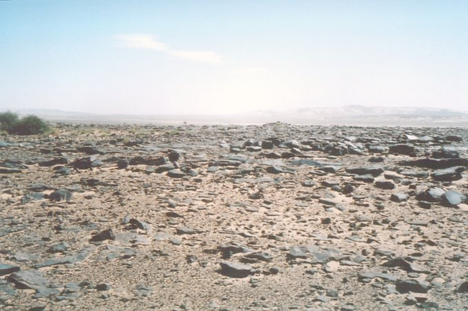 ...this part of the Adrar region is fairly barren - but has a beauty of its own.