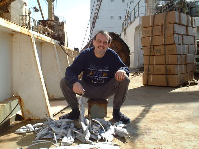 Captain Peter loading fish from a Russian trawler in direct transshipment