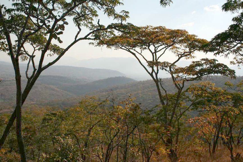 Surrounding view of the Malawi hills