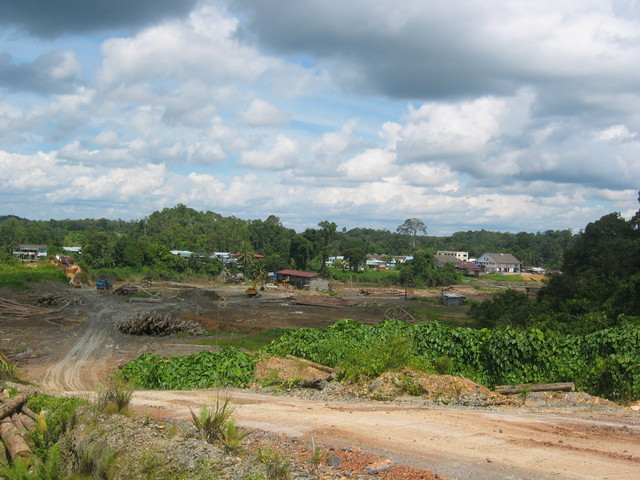 Logging activities in Machan