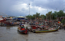 #8: beached boats at Kuala KedahEX_2010_185.jpg -- feeding the monkeys at the marina