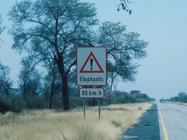 Elephant warning sign