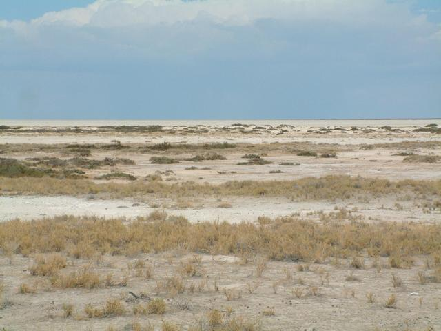 Etosha Pan, towards the point