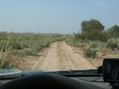 #7: The sandy cart track leading southwest to Karra