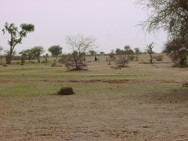 The view northwest from the Confluence.  Note Fulani village in distance