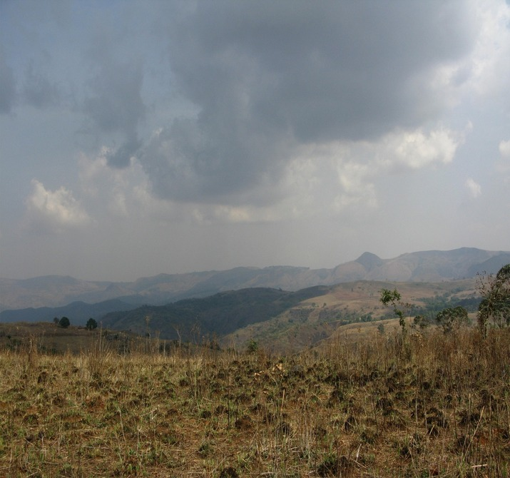 Mambilla Plateau before the rains