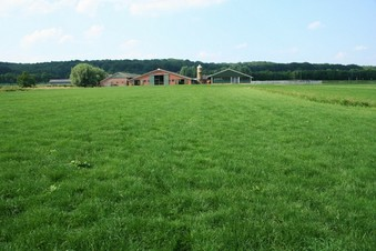 #1: The point in the grass and view to the North, with the farm