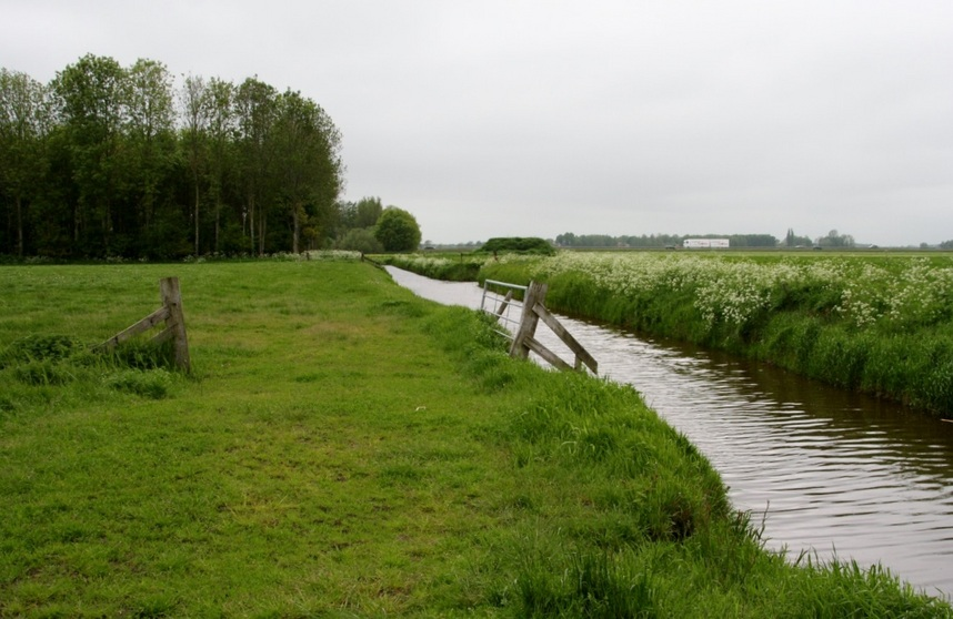 Drainage channel between meadows