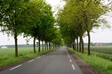 #9: Typical Dutch road in this area