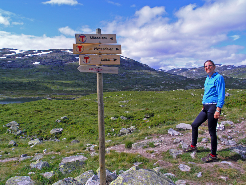 DNT marks the hiking trails on Hardangervidda