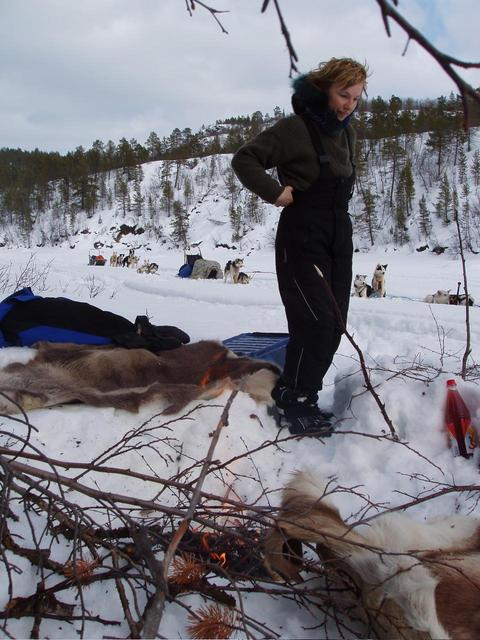 Lunch break by the fire on reindeer skins, Kari and the dogs