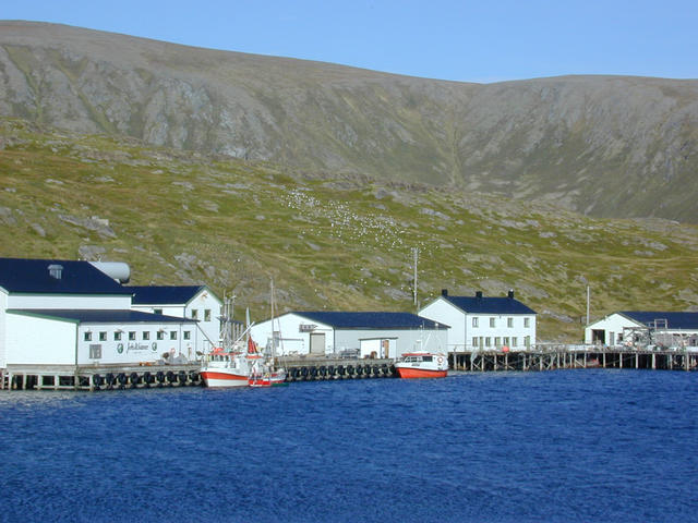 The harbour area
