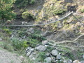 #4: The mule train crossing the suspension bridge at Khaulighat