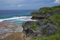#2: Another view of the coast of Niue, 8.86 km from the confluence point (which lies off the left-hand side of this photo)