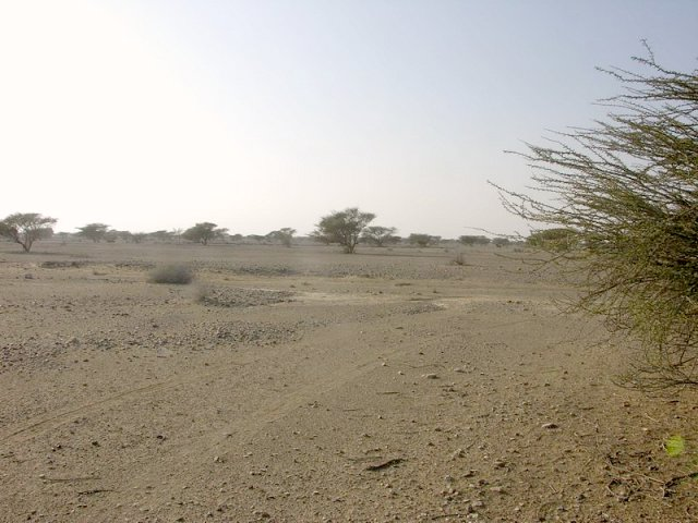 View north / Blick nach Norden