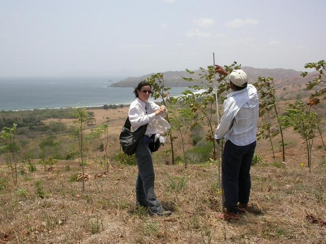 Bettina and Jairo working in the reforestation plot