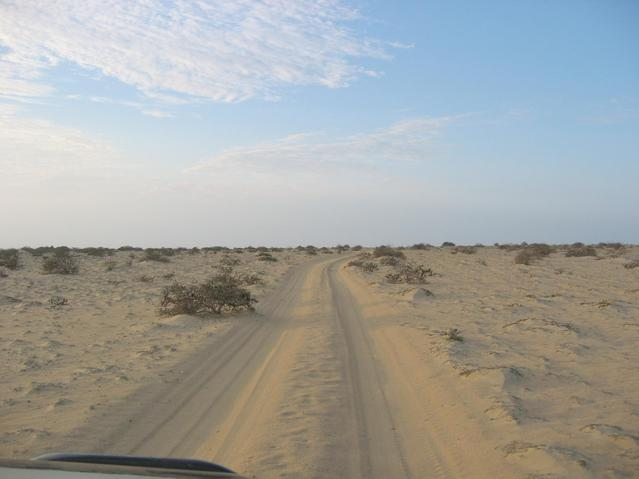 En route: in the desert of Sechura
