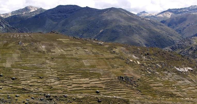 Incan terracing and road