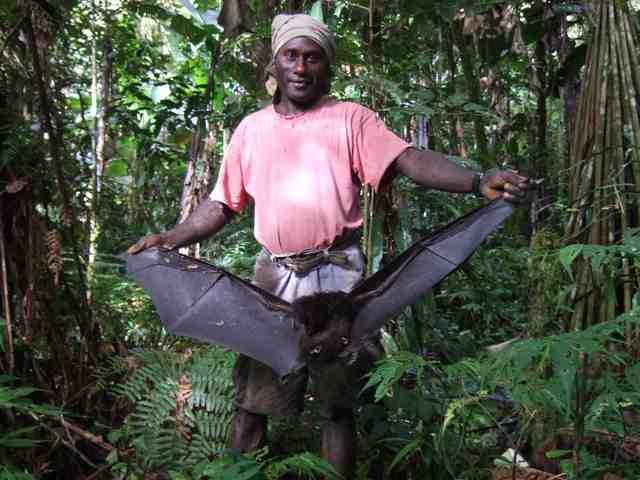 Charles Wesley Pirigoi, guide Togarao village displaying previous night's kill