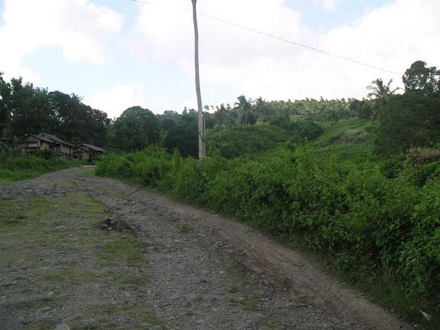View to the North; dirt road/trail beyond the paved road to Barangay Baluno.