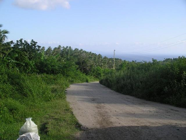View to the South; end of the paved road looking towards the sea.