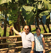 #8: Touching the Cavendish variety banana at TADELCO, the biggest banana plantation owned by Floreindo