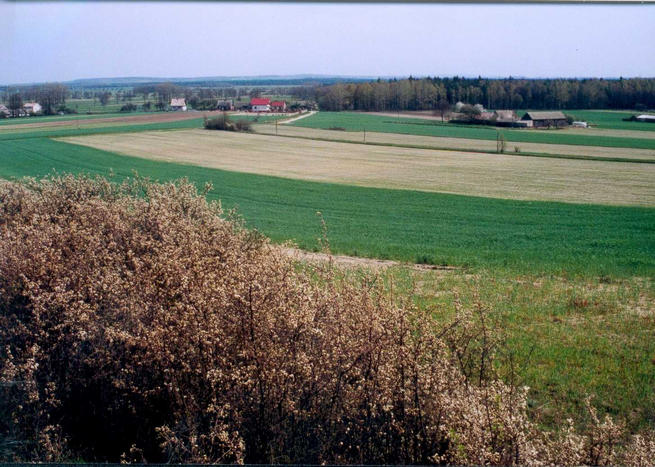 View towards Kajetanow, with hills and forrest behind