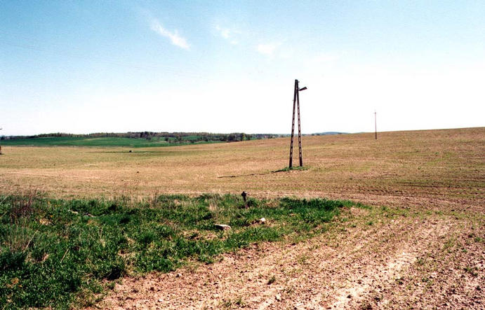 a confluence next to electricity relay pole
