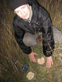 #8: Toadstools have been found