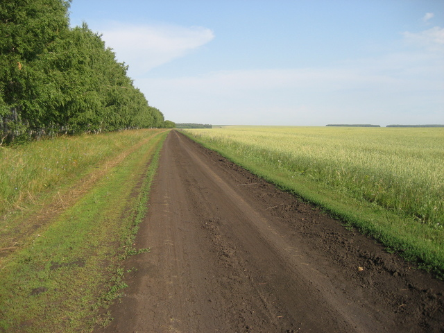 Field dirt road, 500m from the CP