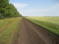 #7: Field dirt road, 500m from the CP